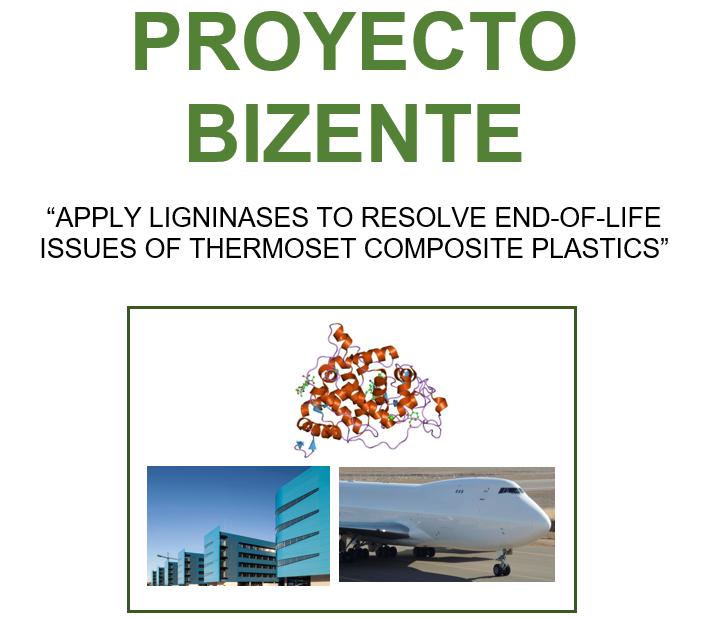 Proyecto BIZENTE