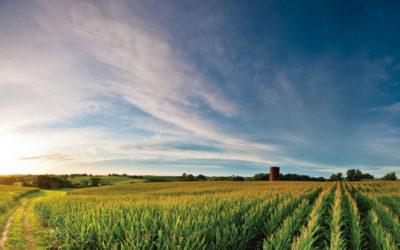 5 retos en proceso, al servicio de una agricultura más competitiva y sostenible
